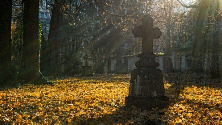 """Program """"Groby i cmentarze wojenne w kraju"""""""