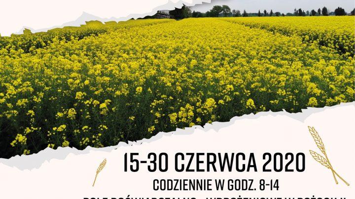 Dni Pola – LODR w Końskowoli