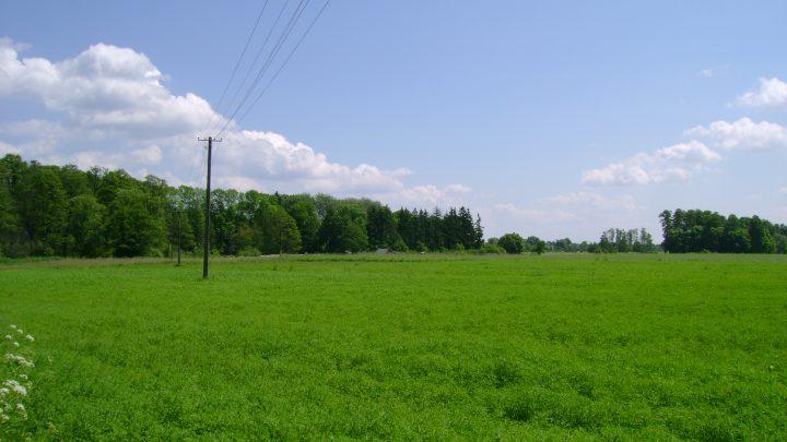 Wykaz nieruchomości komunalnych przeznaczonych do dzierżawy na rzecz dotychczasowego dzierżawcy